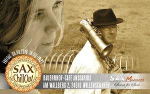 SaxChillOut mit Tiefenentspannungsreise, Willenscharen (24616) @ Hof-Café Ansgarius, Willenscharen (24616) | Willenscharen | Schleswig-Holstein | Deutschland